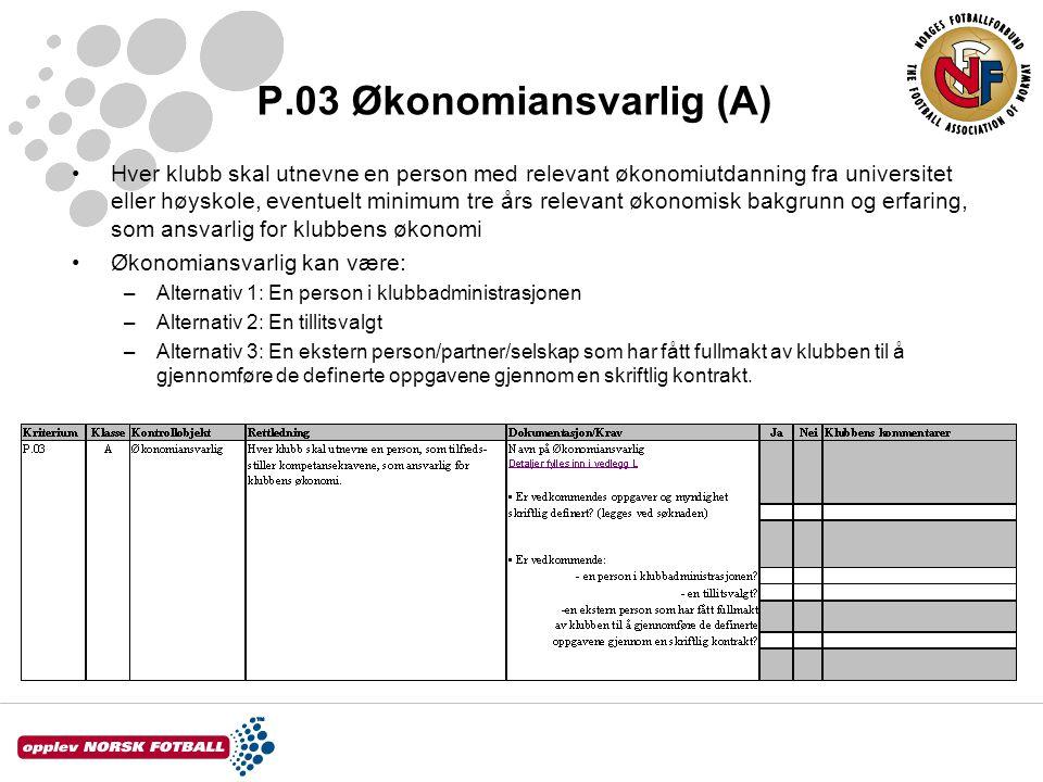 P.03 Økonomiansvarlig (A)