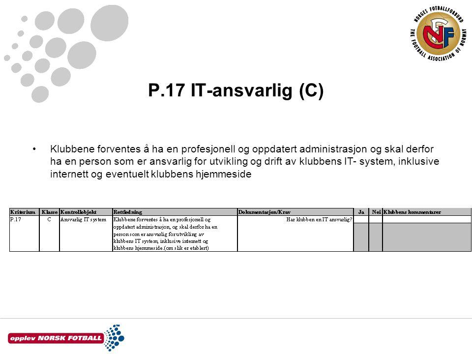 P.17 IT-ansvarlig (C)