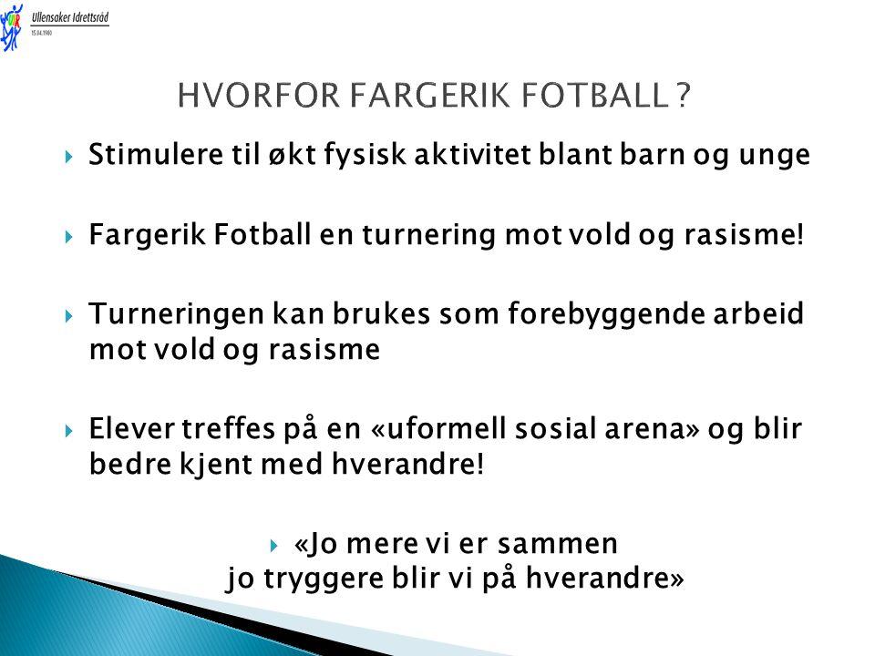 HVORFOR FARGERIK FOTBALL