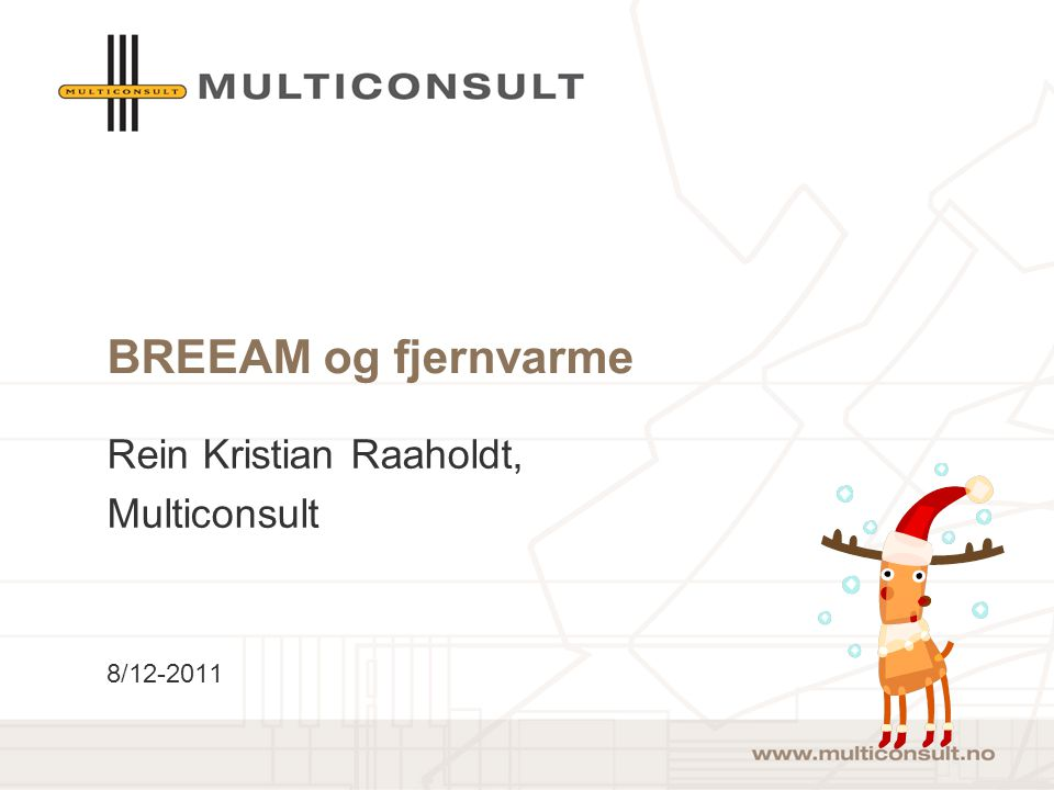 Rein Kristian Raaholdt, Multiconsult 8/12-2011