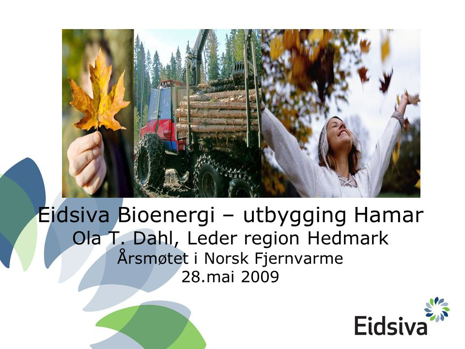 Eidsiva Bioenergi – utbygging Hamar Ola T