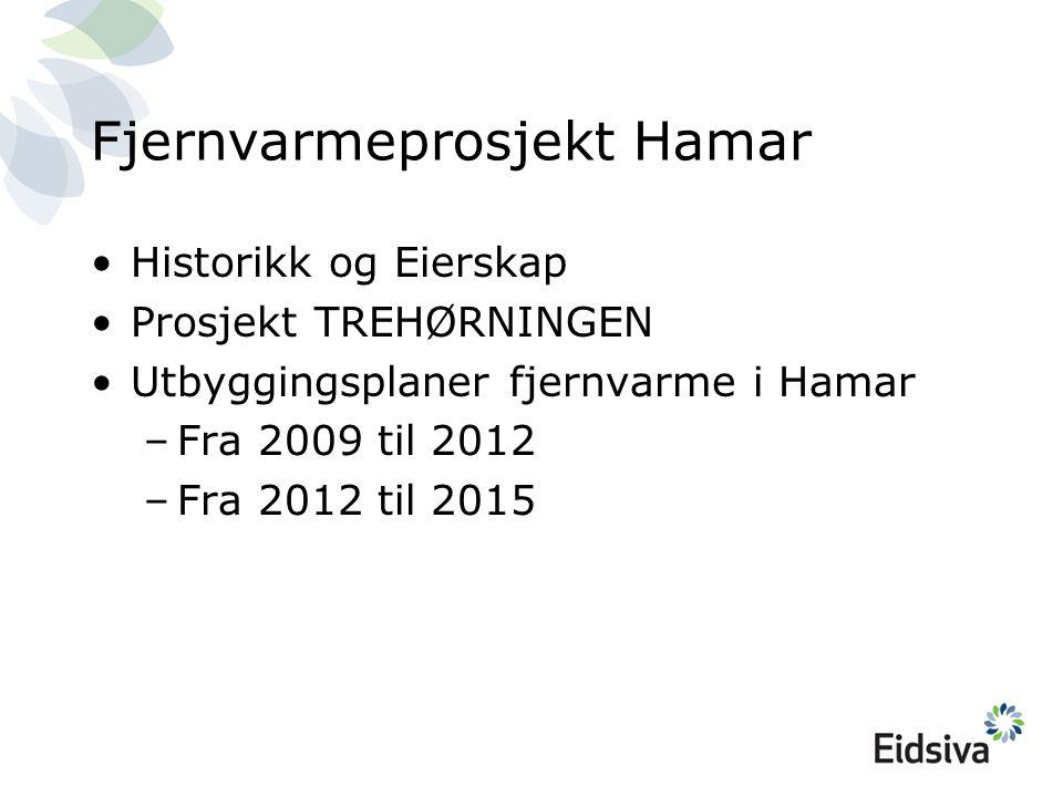 Fjernvarmeprosjekt Hamar