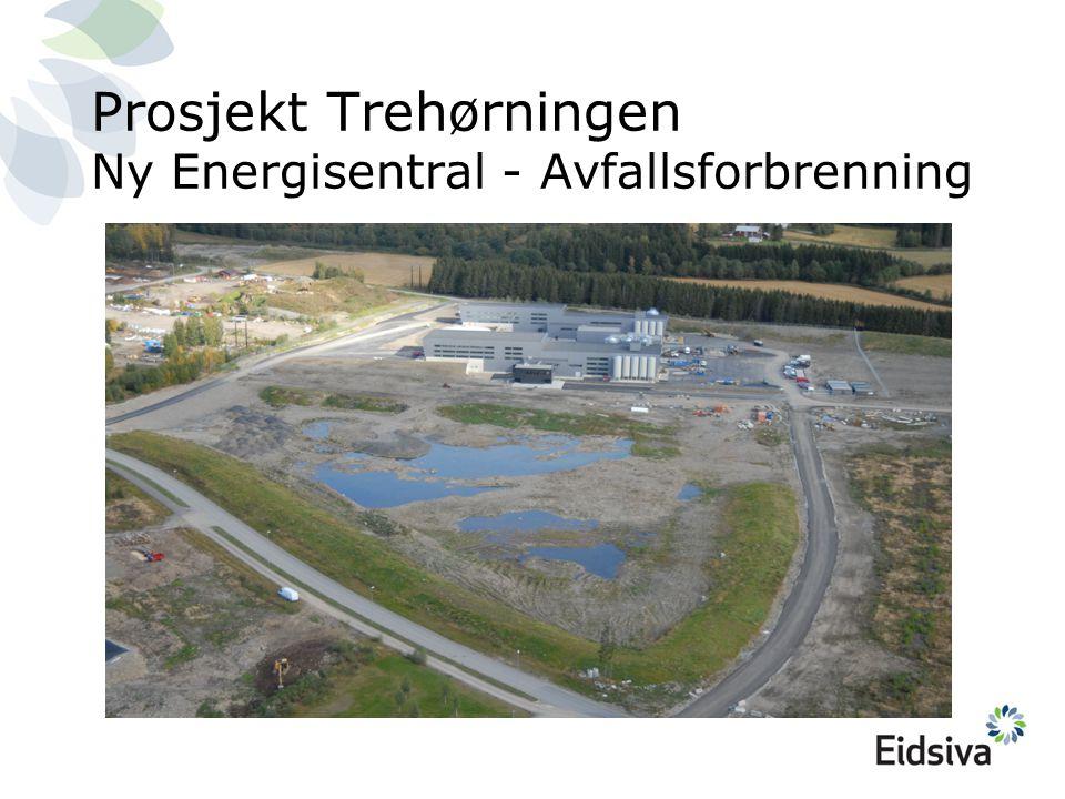 Prosjekt Trehørningen Ny Energisentral - Avfallsforbrenning