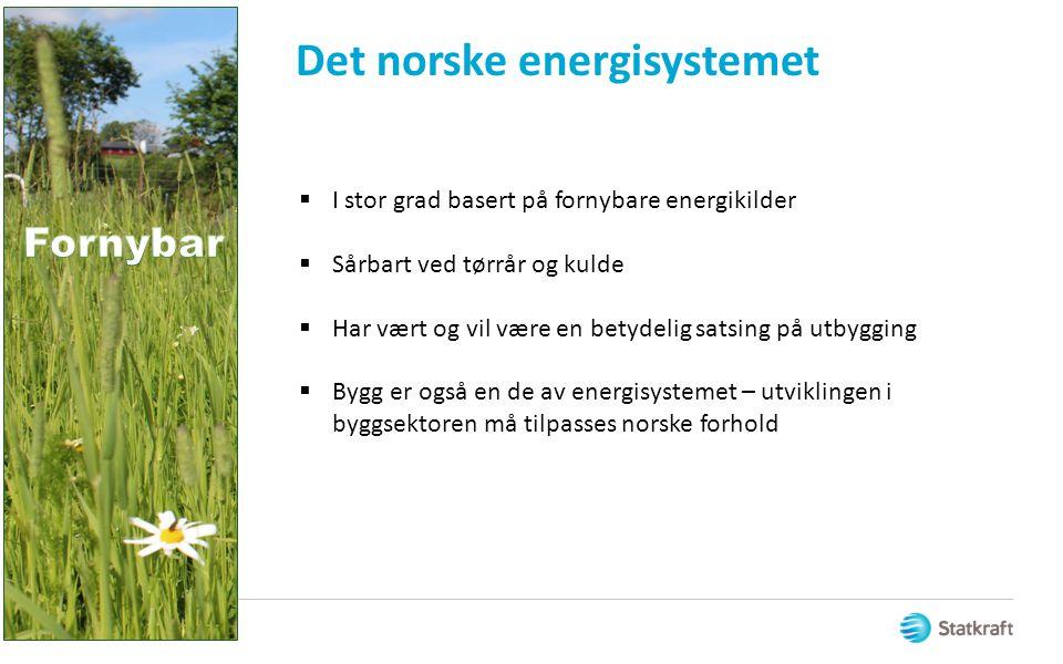 Det norske energisystemet