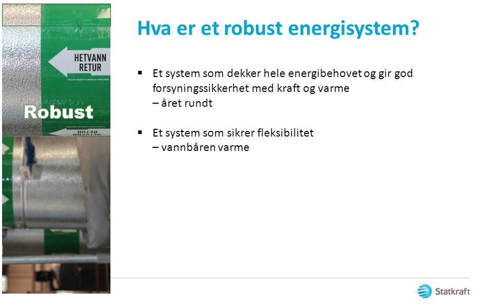 Hva er et robust energisystem