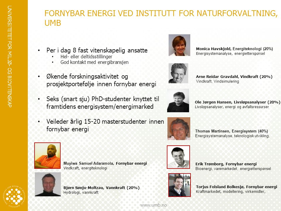 FORNYBAR ENERGI VED INSTITUTT FOR NATURFORVALTNING, UMB