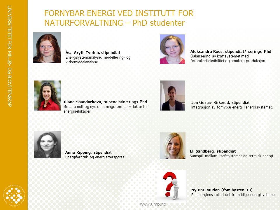FORNYBAR ENERGI VED INSTITUTT FOR NATURFORVALTNING – PhD studenter