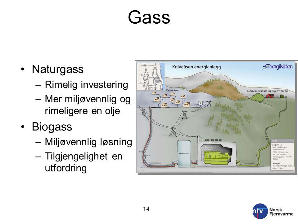 Gass Naturgass Biogass Rimelig investering