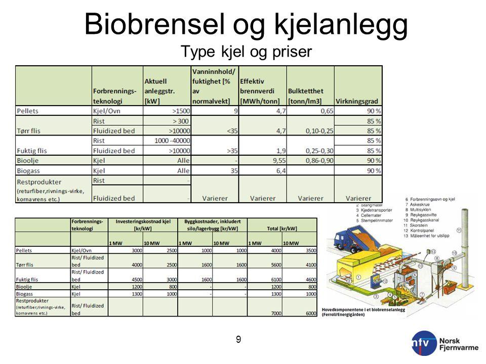 Biobrensel og kjelanlegg Type kjel og priser