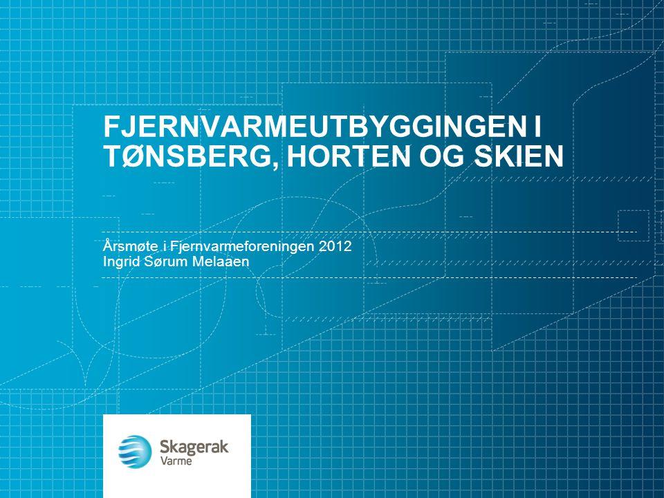Fjernvarmeutbyggingen i Tønsberg, HORTEN OG SKIEN