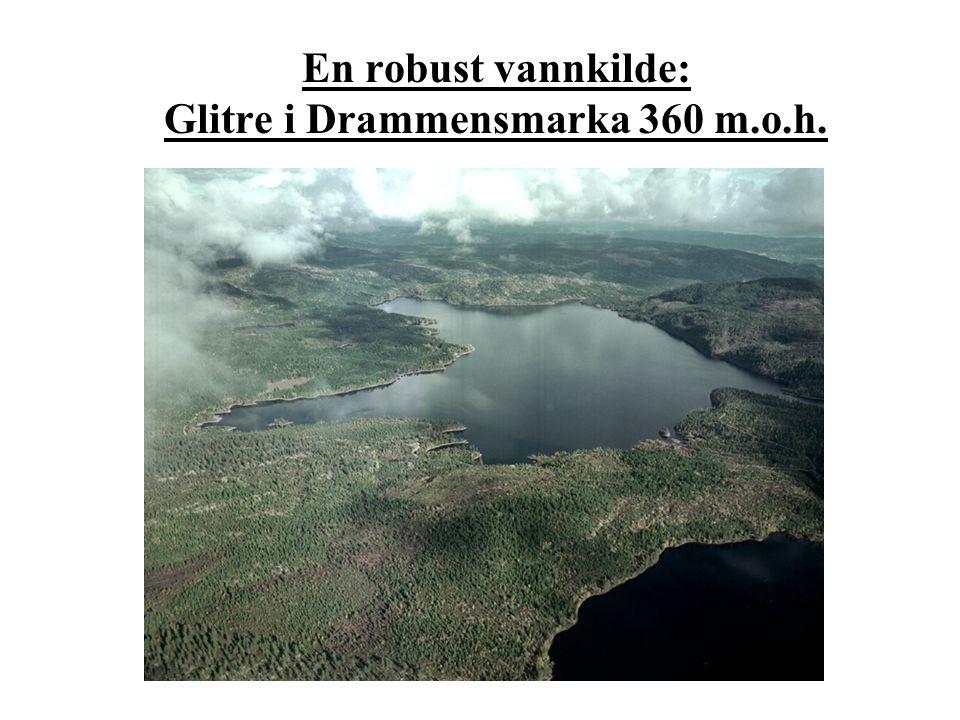 En robust vannkilde: Glitre i Drammensmarka 360 m.o.h.