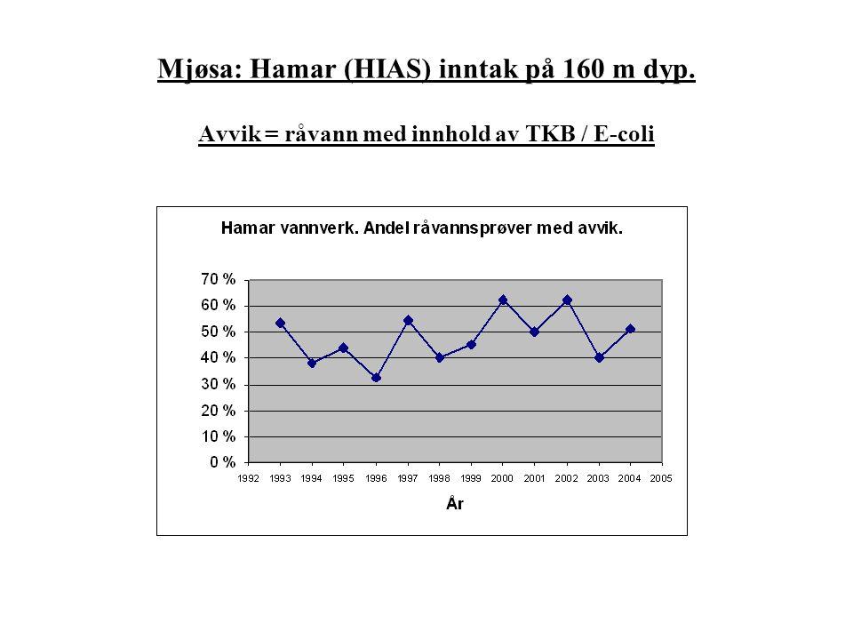 Mjøsa: Hamar (HIAS) inntak på 160 m dyp