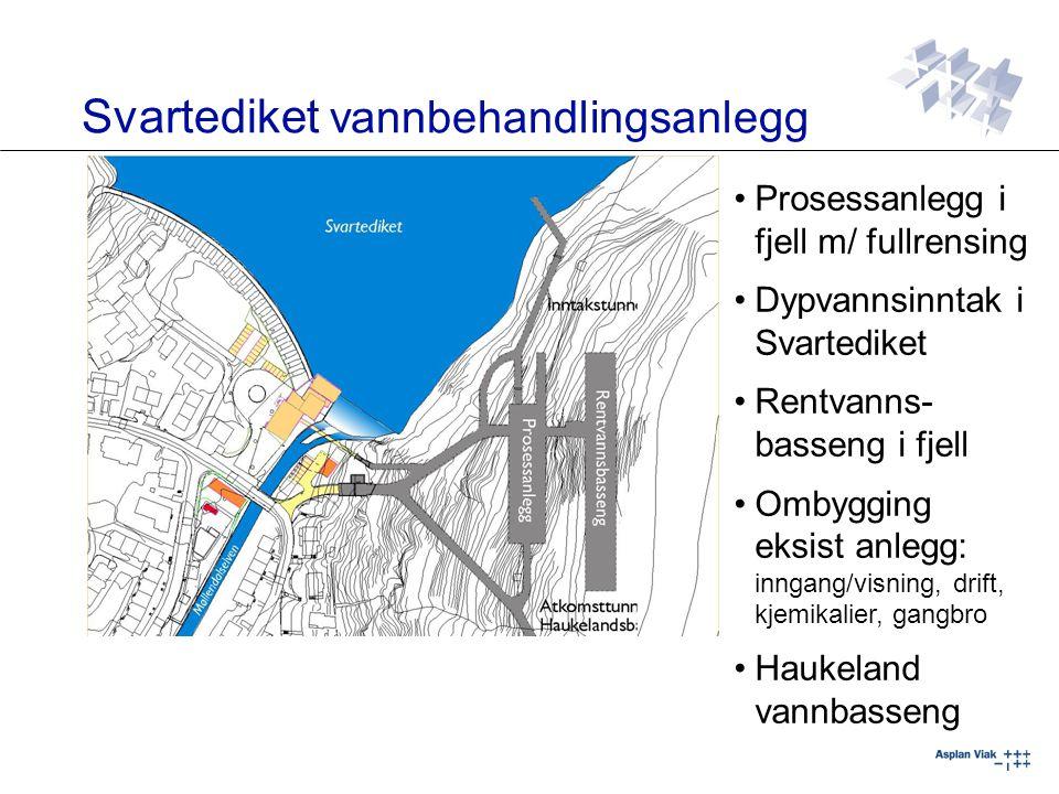 Svartediket vannbehandlingsanlegg