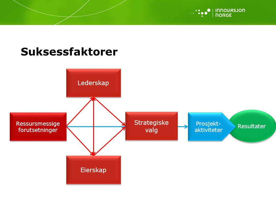 Suksessfaktorer Lederskap Strategiske valg Eierskap Resultater