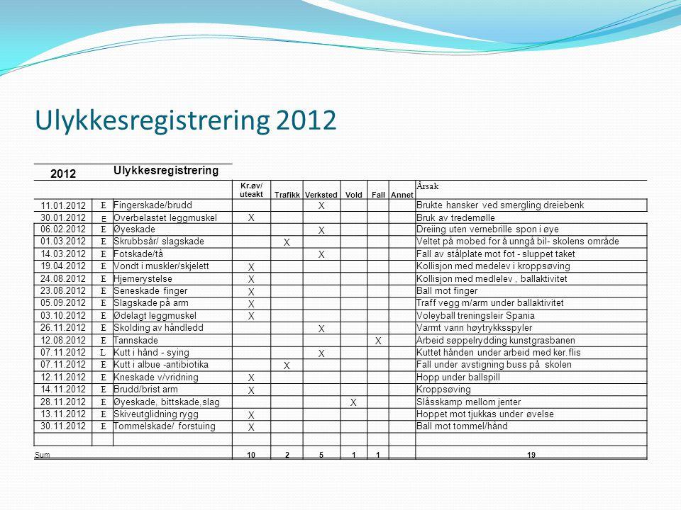 Ulykkesregistrering 2012 2012 Ulykkesregistrering Årsak 11.01.2012 E