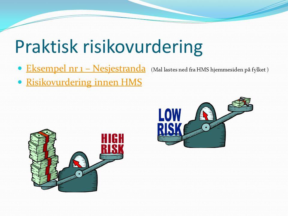 Praktisk risikovurdering