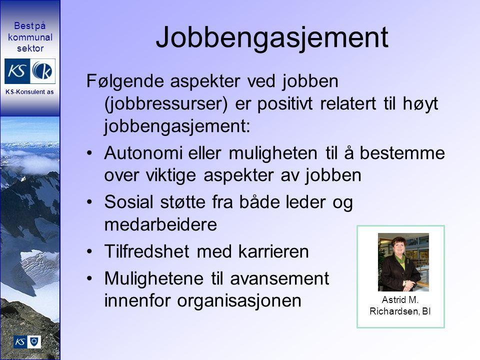 Jobbengasjement Følgende aspekter ved jobben (jobbressurser) er positivt relatert til høyt jobbengasjement: