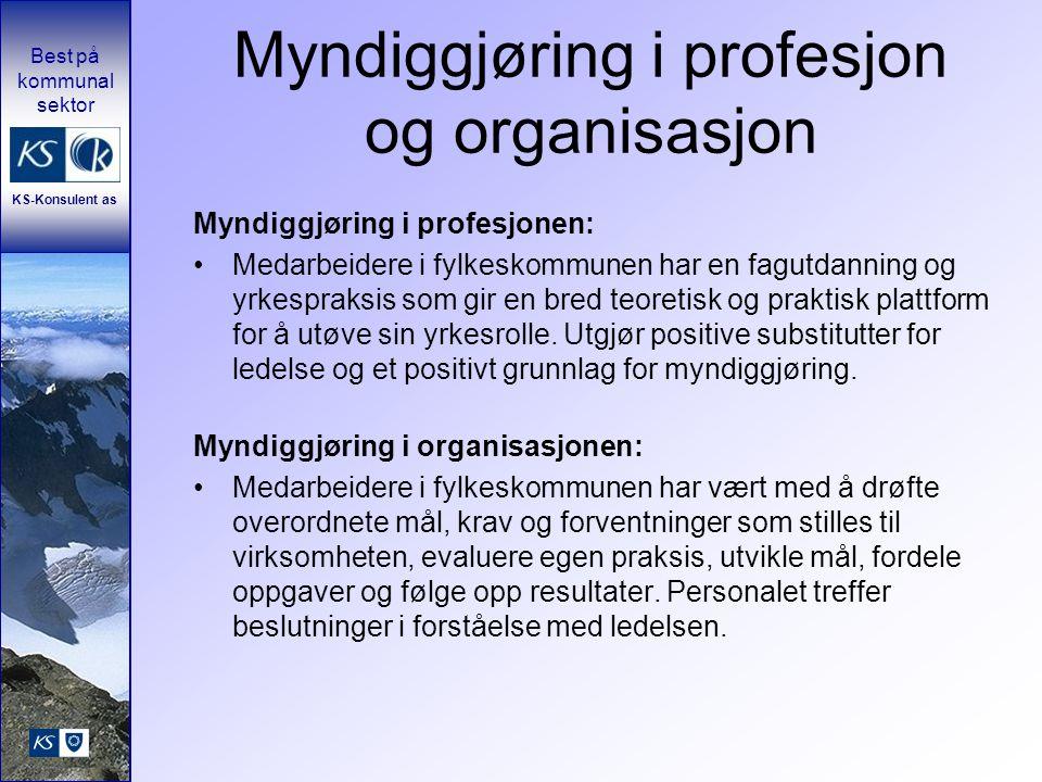 Myndiggjøring i profesjon og organisasjon