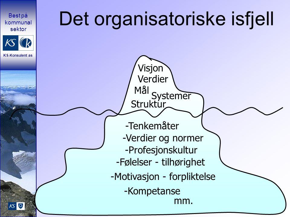 Det organisatoriske isfjell