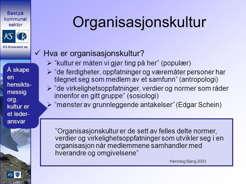 Organisasjonskultur Hva er organisasjonskultur