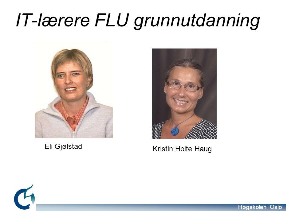 IT-lærere FLU grunnutdanning