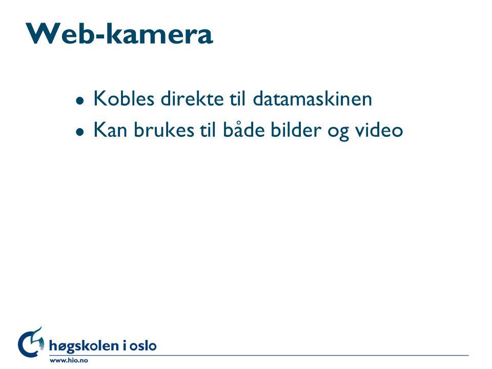Web-kamera Kobles direkte til datamaskinen