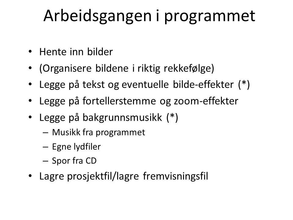 Arbeidsgangen i programmet