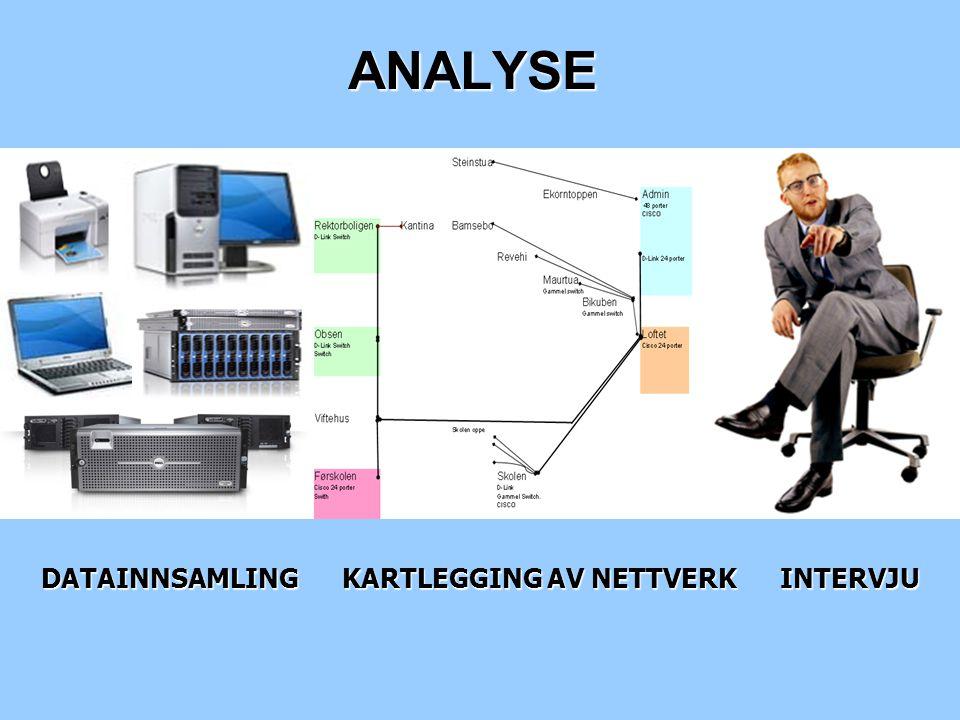 DATAINNSAMLING KARTLEGGING AV NETTVERK INTERVJU