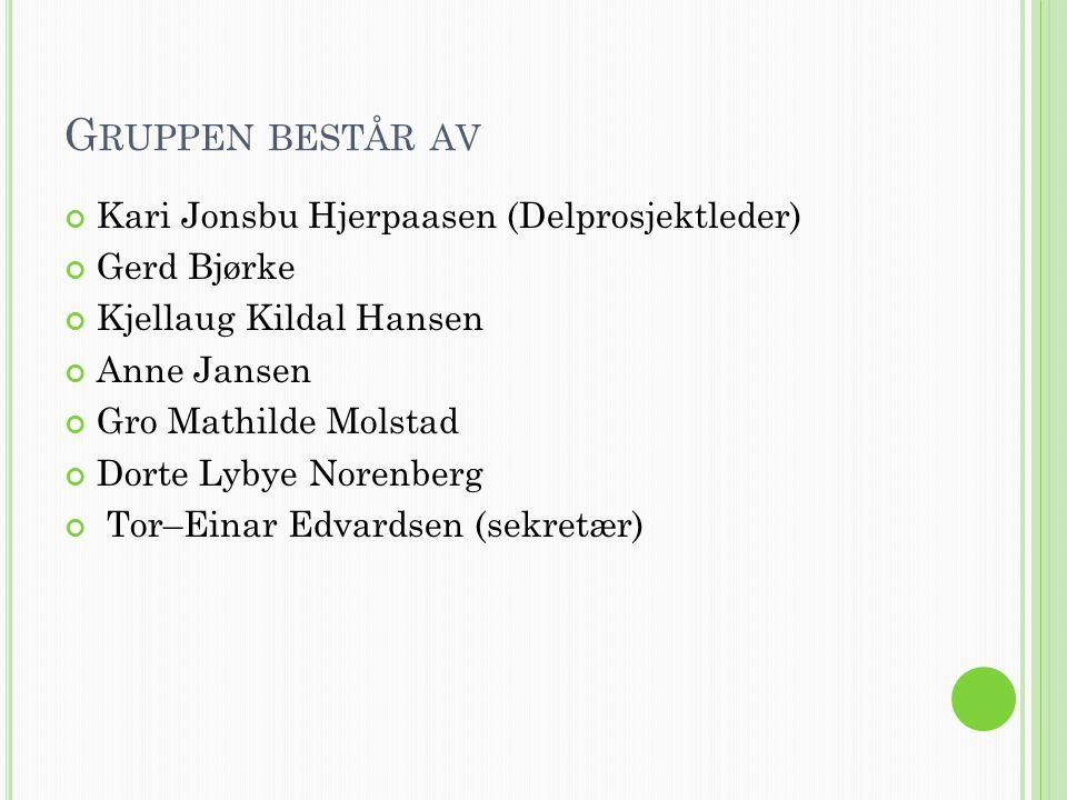 Gruppen består av Kari Jonsbu Hjerpaasen (Delprosjektleder)