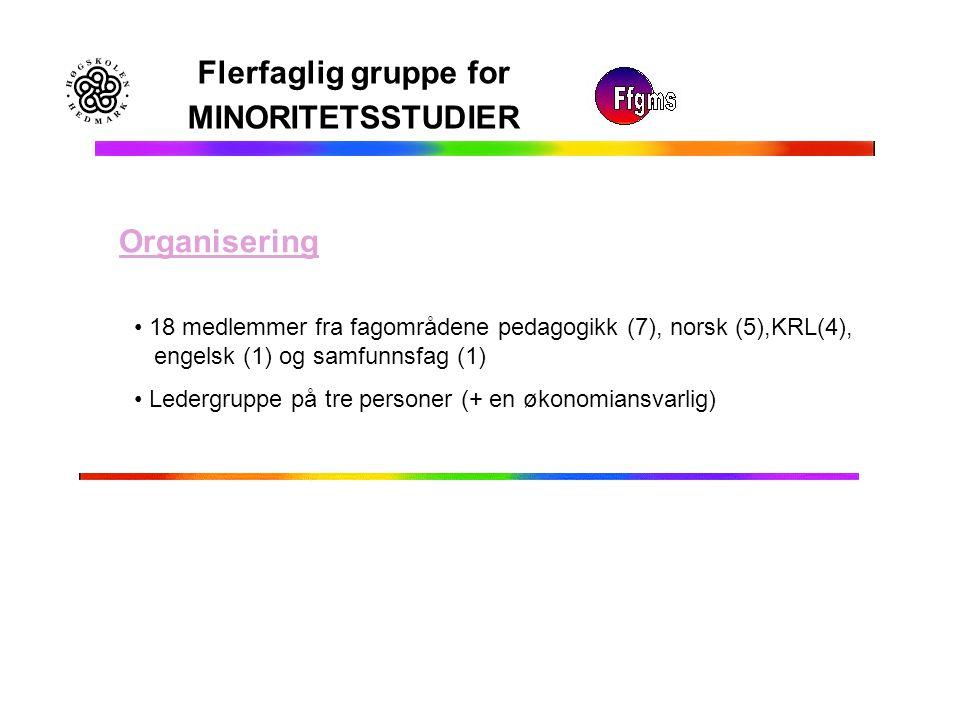 Flerfaglig gruppe for MINORITETSSTUDIER