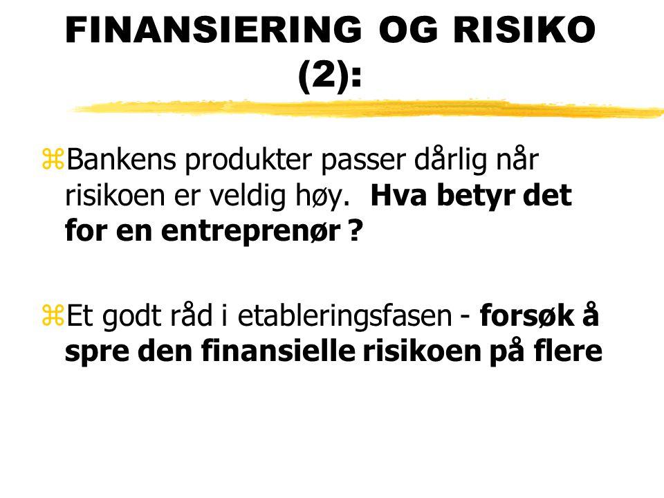 FINANSIERING OG RISIKO (2):