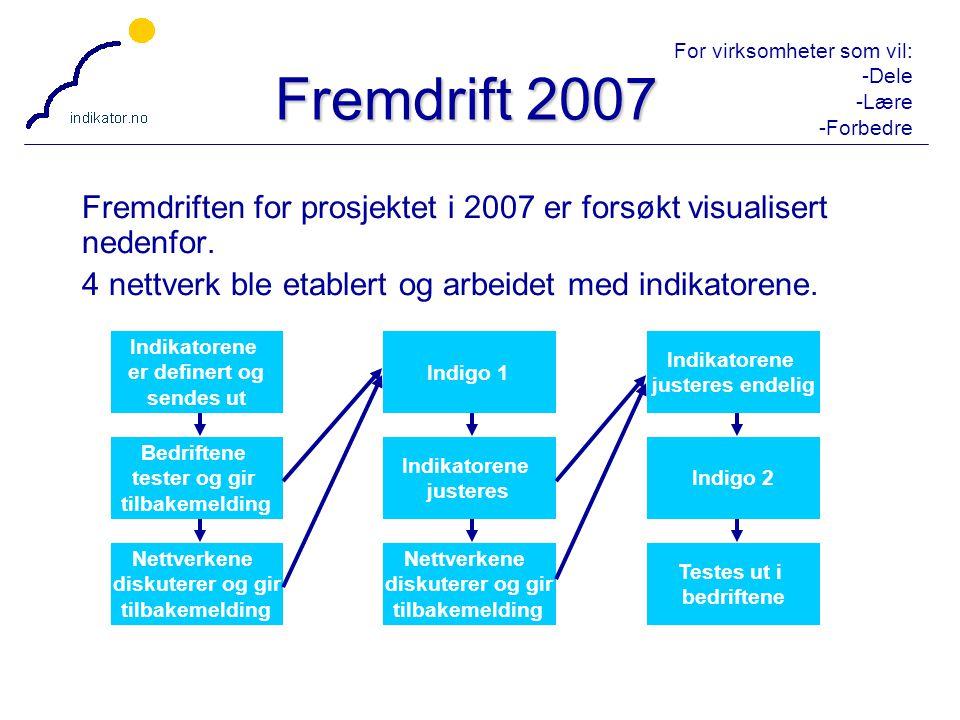 Fremdrift 2007 Fremdriften for prosjektet i 2007 er forsøkt visualisert nedenfor. 4 nettverk ble etablert og arbeidet med indikatorene.