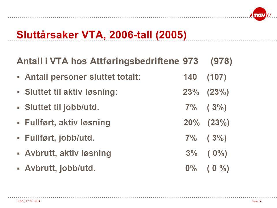 Sluttårsaker VTA, 2006-tall (2005)