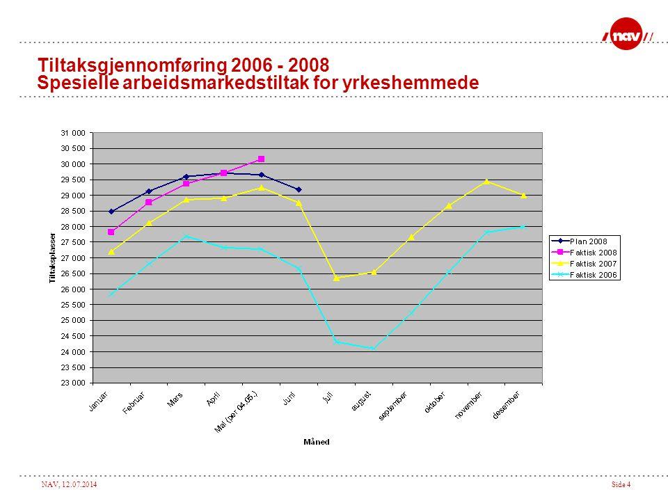 Tiltaksgjennomføring 2006 - 2008 Spesielle arbeidsmarkedstiltak for yrkeshemmede