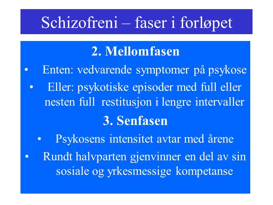 Schizofreni – faser i forløpet