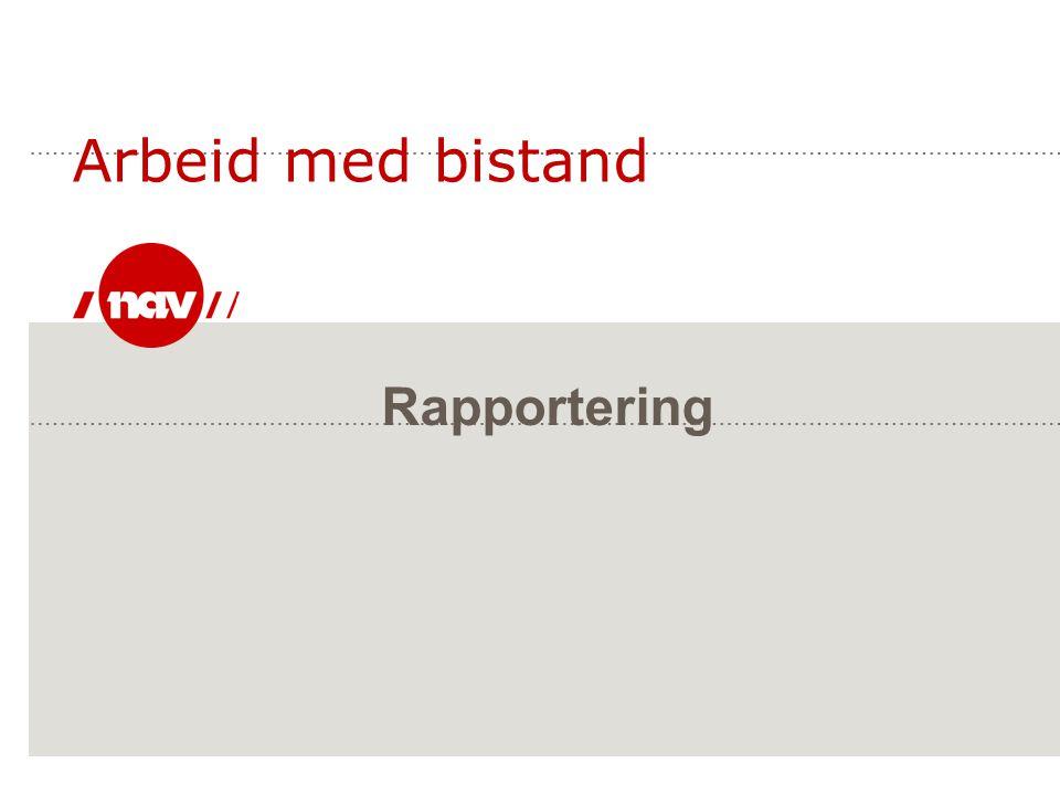 Arbeid med bistand Rapportering