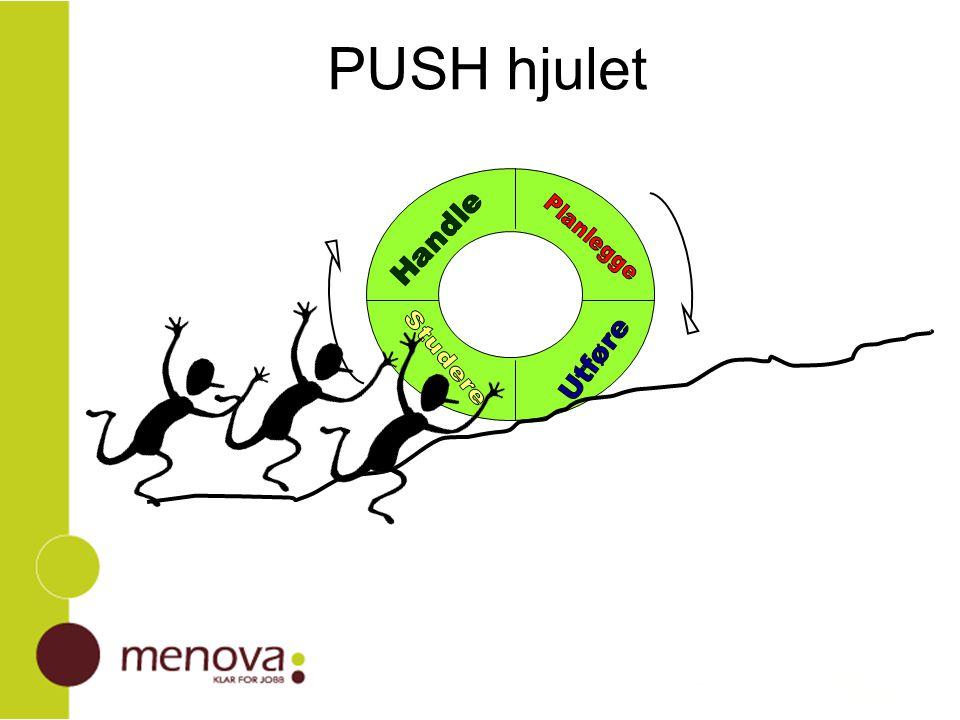 PUSH hjulet Planlegge Utføre Studere Handle