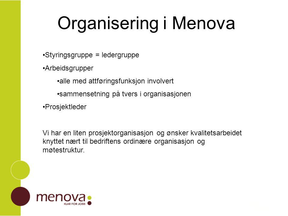 Organisering i Menova Styringsgruppe = ledergruppe Arbeidsgrupper