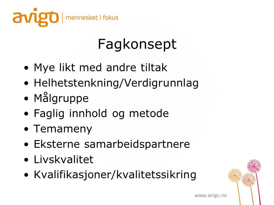 Fagkonsept Mye likt med andre tiltak Helhetstenkning/Verdigrunnlag