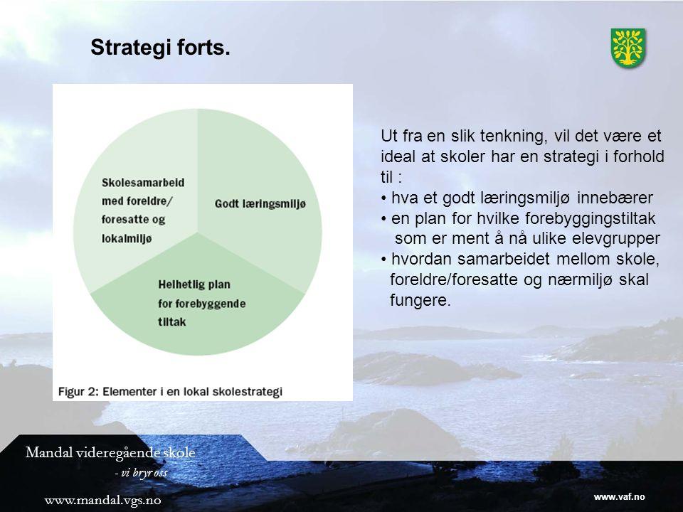 Strategi forts. Ut fra en slik tenkning, vil det være et ideal at skoler har en strategi i forhold til :
