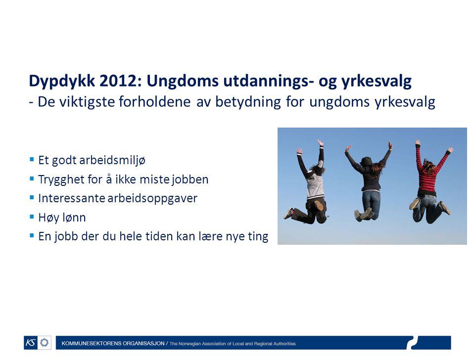 Dypdykk 2012: Ungdoms utdannings- og yrkesvalg - De viktigste forholdene av betydning for ungdoms yrkesvalg