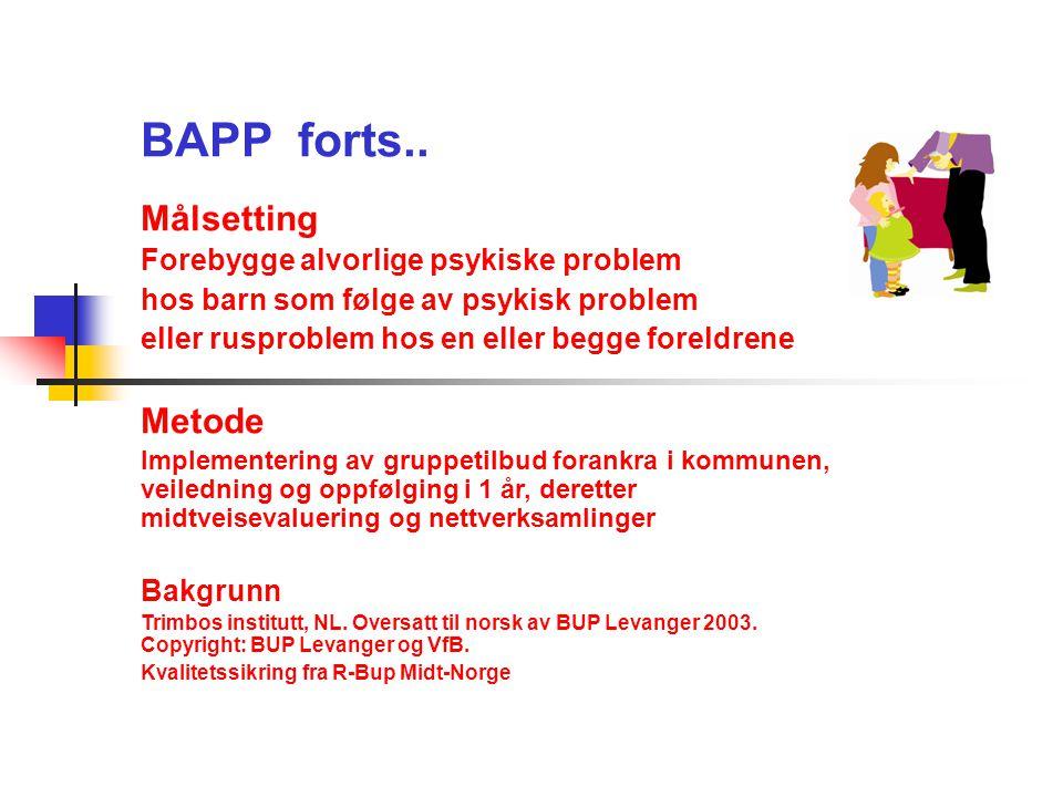 BAPP forts.. Målsetting Metode Forebygge alvorlige psykiske problem