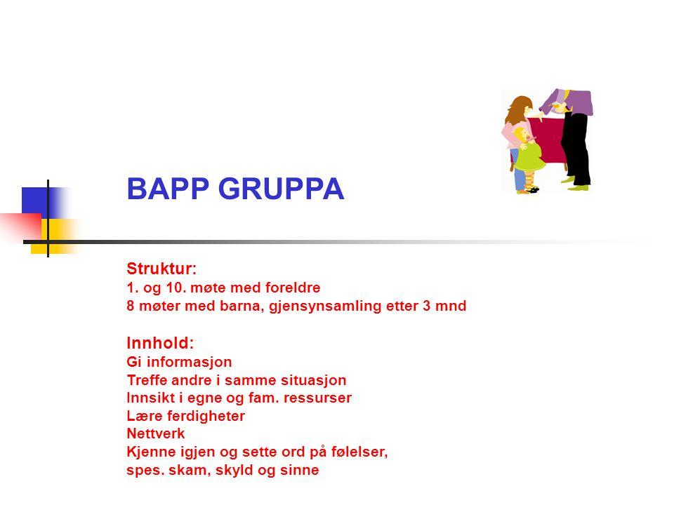 BAPP GRUPPA Struktur: Innhold: 1. og 10. møte med foreldre
