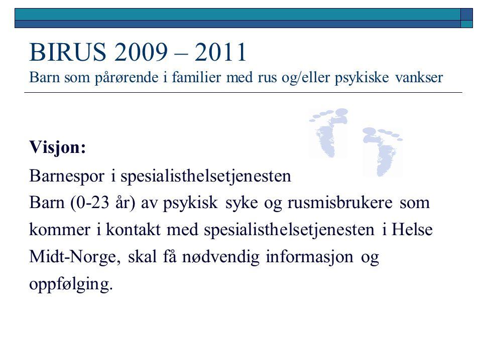BIRUS 2009 – 2011 Barn som pårørende i familier med rus og/eller psykiske vankser