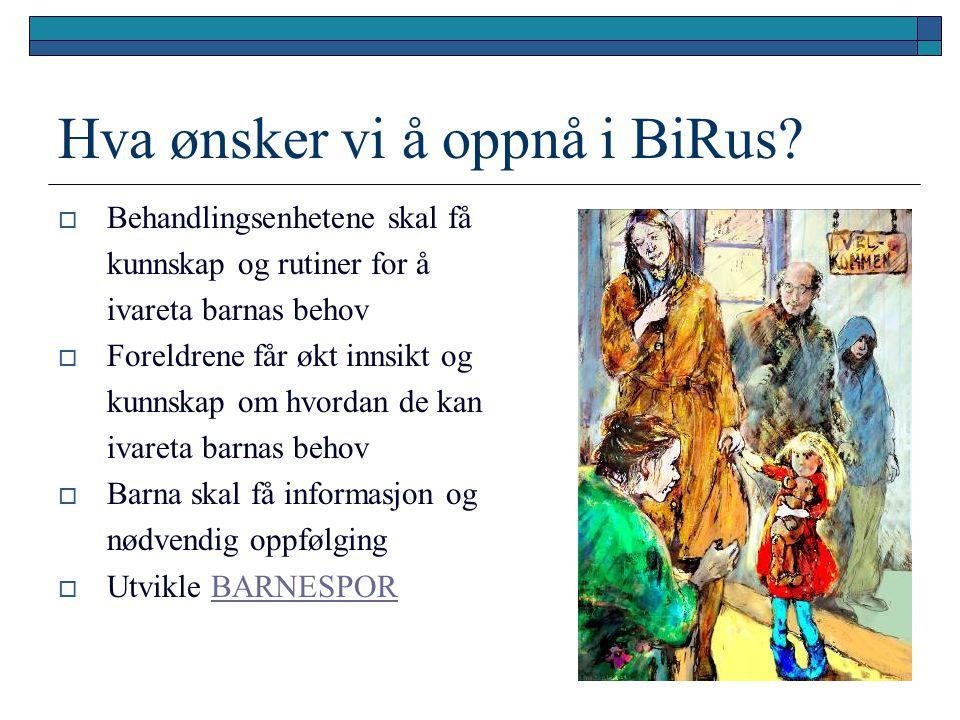 Hva ønsker vi å oppnå i BiRus