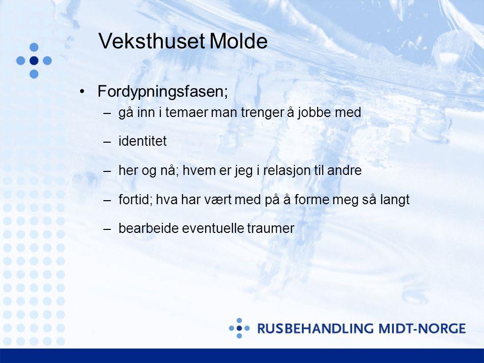 Veksthuset Molde Fordypningsfasen;