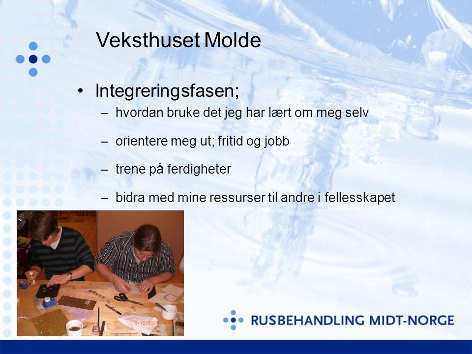 Veksthuset Molde Integreringsfasen;