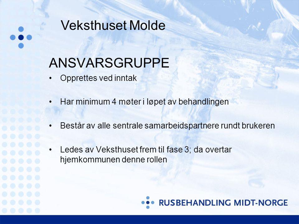 Veksthuset Molde ANSVARSGRUPPE Opprettes ved inntak