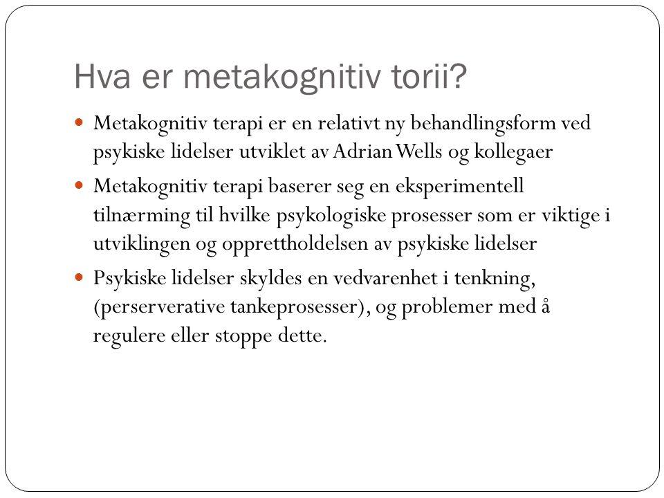 Hva er metakognitiv torii