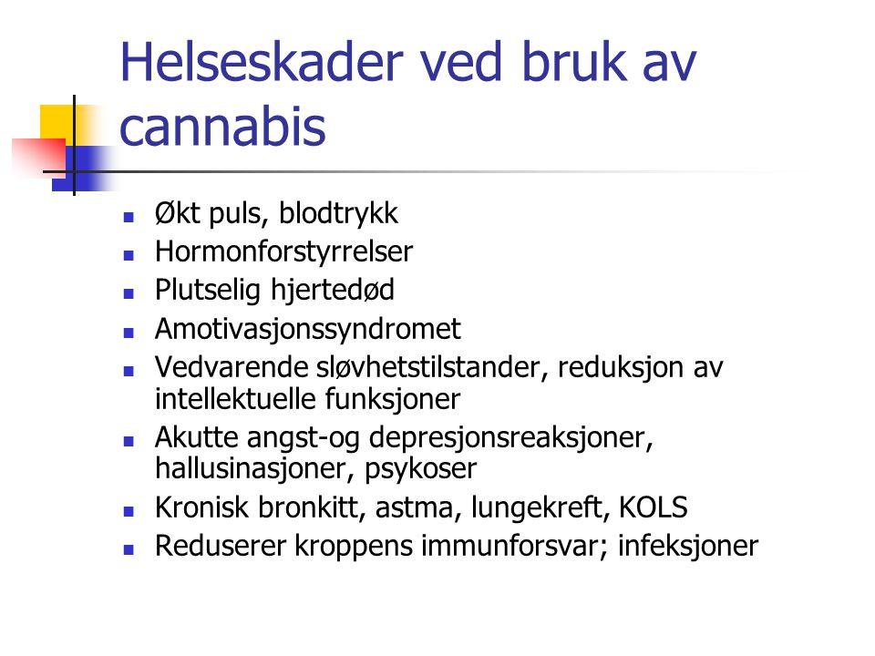 Helseskader ved bruk av cannabis